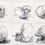 skulls-080817